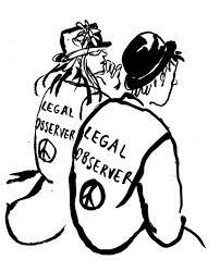 Legal Observer image